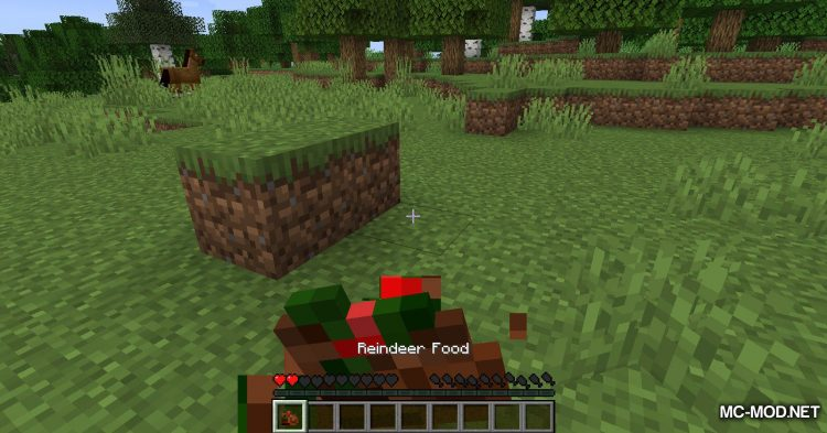 RotMG Food mod for Minecraft (1)