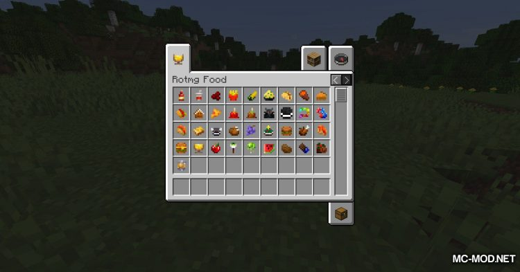 RotMG Food mod for Minecraft (9)