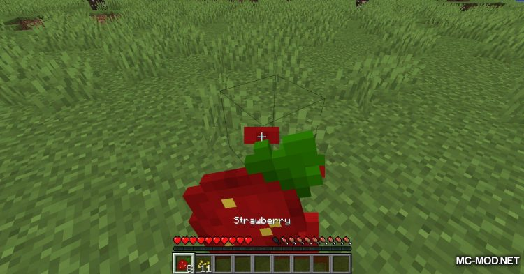 Simply Strawberries mod for Minecraft (9)