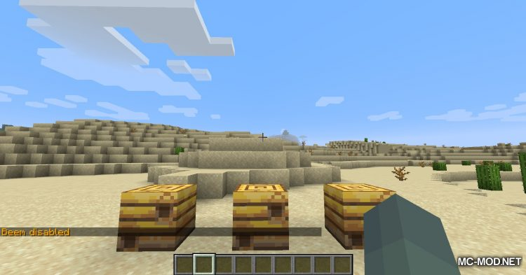 Beem mod for Minecraft (12)