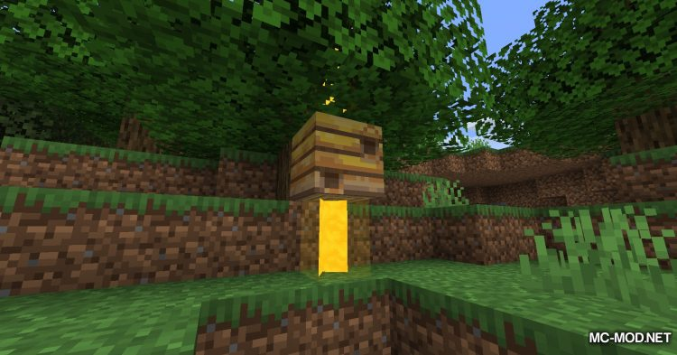 Beem mod for Minecraft (4)