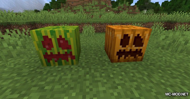 Carved Melon mod for Minecraft (8)