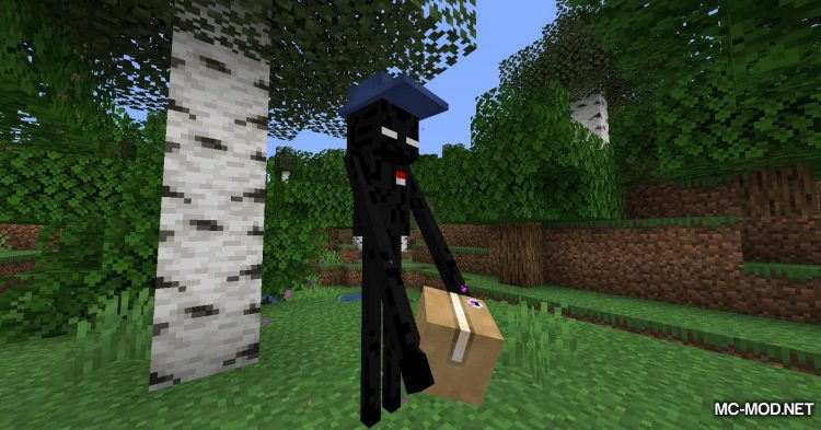 Ender Mail mod for Minecraft (11)