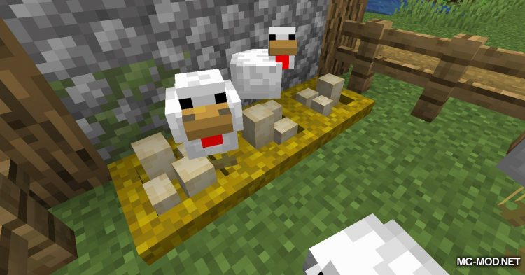 Incubation mod for Minecraft (4)