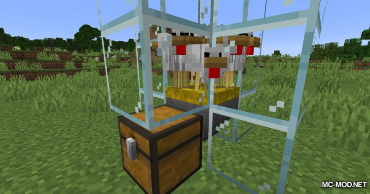 Incubation mod for Minecraft (5)