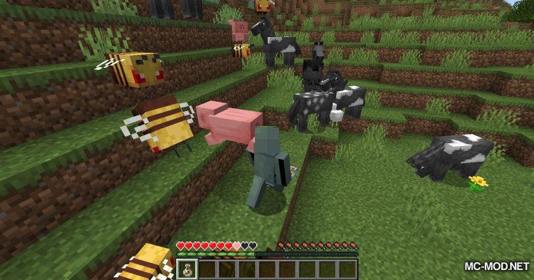 Potion of Bees mod for Minecraft (10)