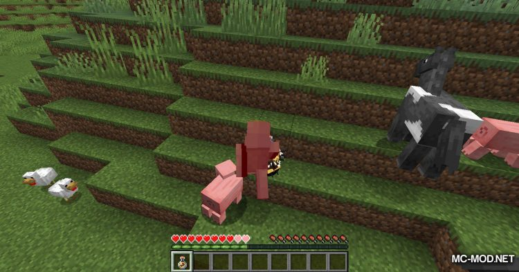 Potion of Bees mod for Minecraft (9)