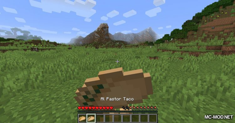 TacoCraft mod for Minecraft (18)