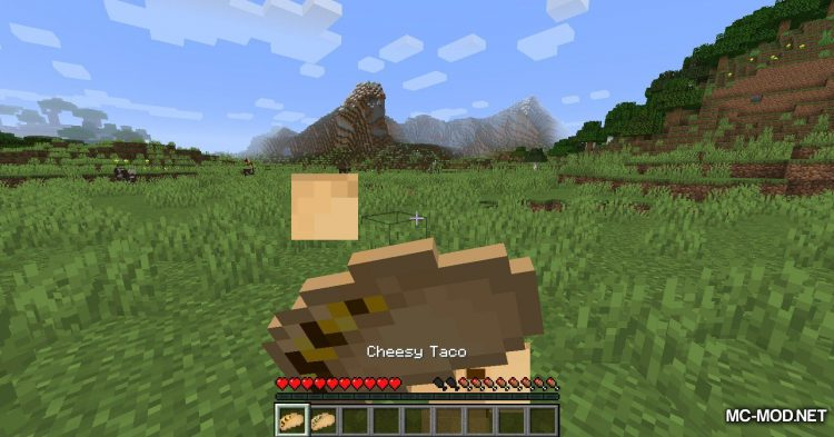 TacoCraft mod for Minecraft (19)