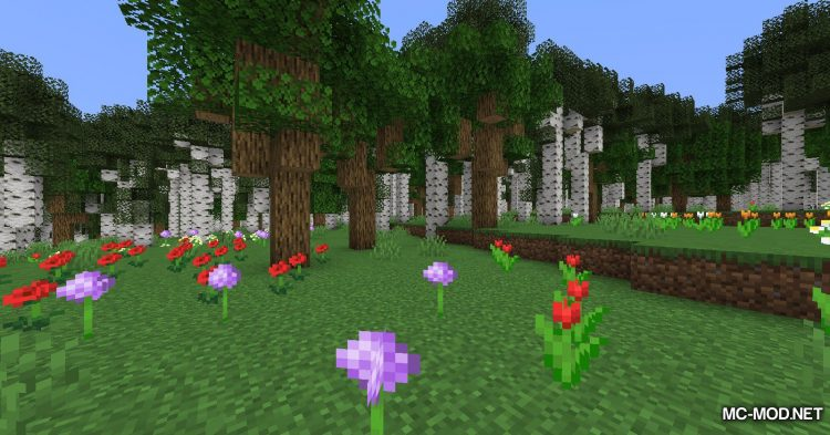 TerraForged mod for Minecraft (5)