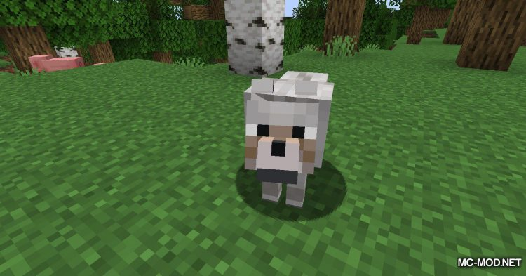 Wolves With Armor mod for Minecraft (2)