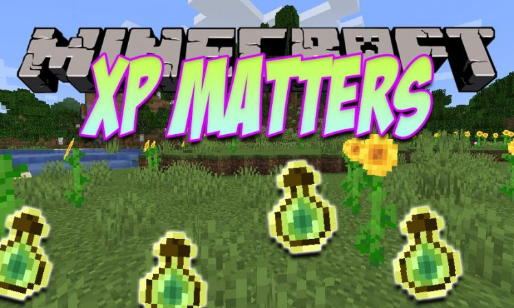 XP Matters mod for Minecraft logo