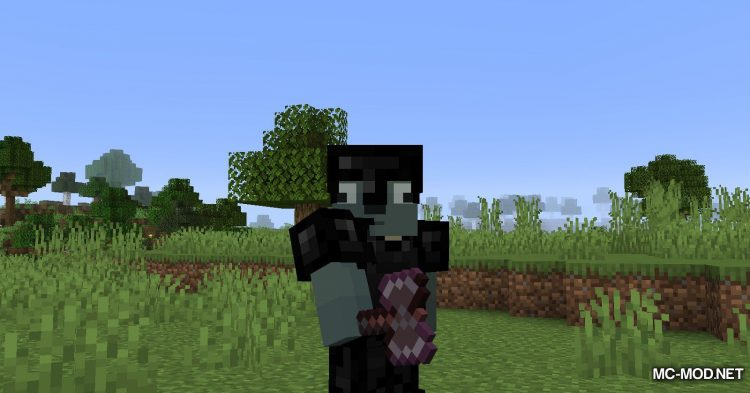 Add-ons Mod mod for Minecraft (7)