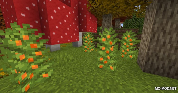 Autumnity mod for Minecraft (5)