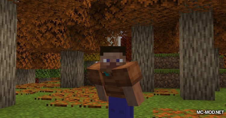 Autumnity mod for Minecraft (8)