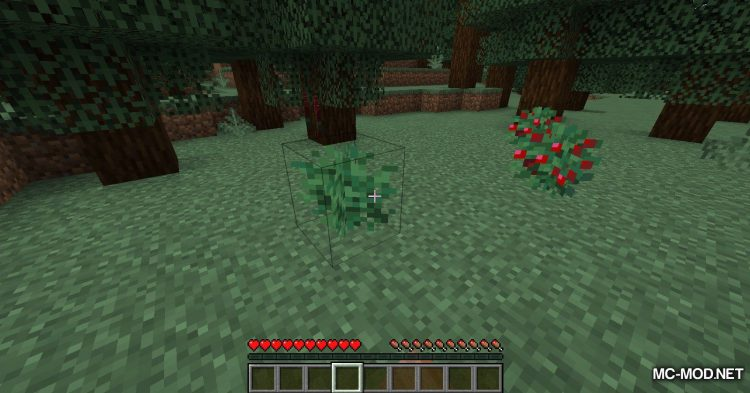 Berry Good mod for Minecraft (3)
