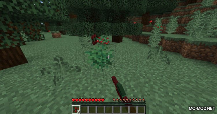 Berry Good mod for Minecraft (4)