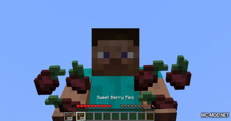 Berry Good mod for Minecraft (6)