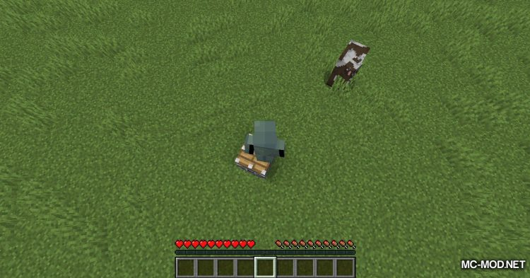 Launchers mod for Minecraft (4)