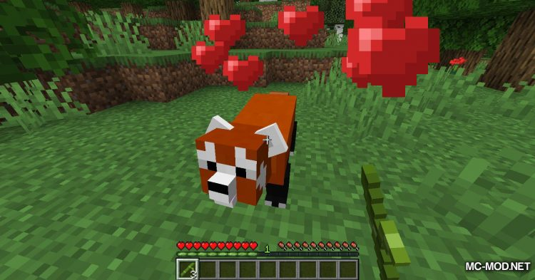 Red Pandas mod for Minecraft (3)