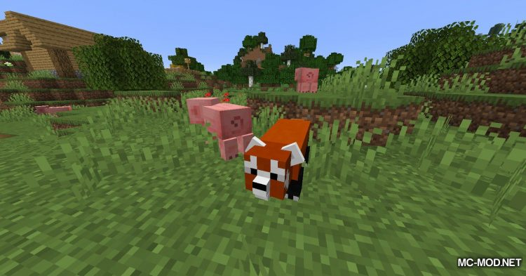 Red Pandas mod for Minecraft (5)