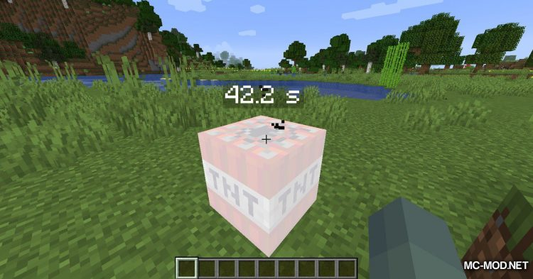 Time To Live mod for Minecraft (7)