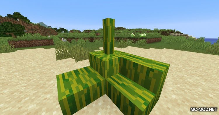 BlockplusMod mod for Minecraft (3)