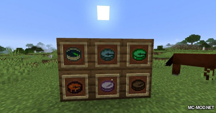Just Another Compass Mod mod for Minecraft (15)