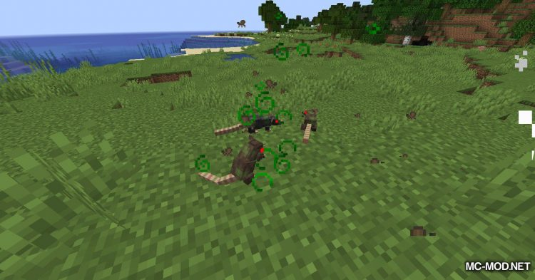 Rats mod for Minecraft (2)