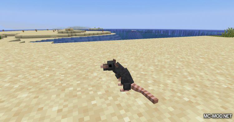 Rats mod for Minecraft (20)