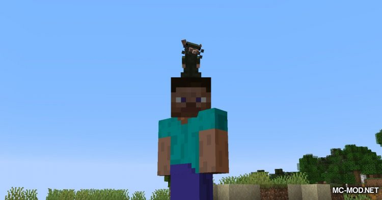 Rats mod for Minecraft (22)