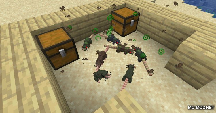 Rats mod for Minecraft (3)