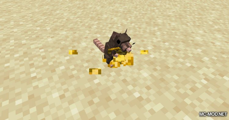 Rats mod for Minecraft (6)