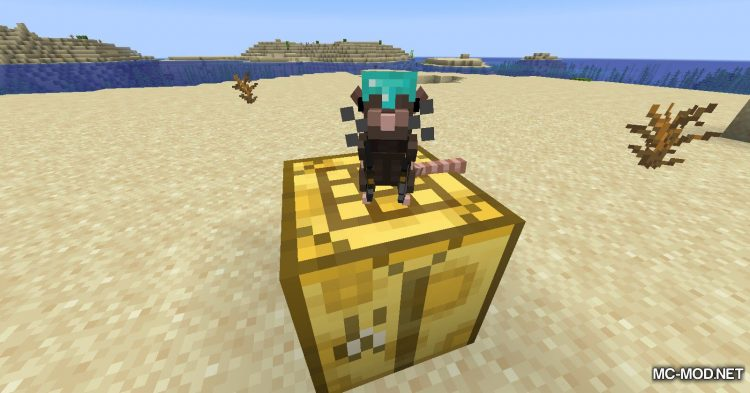 Rats mod for Minecraft (9)