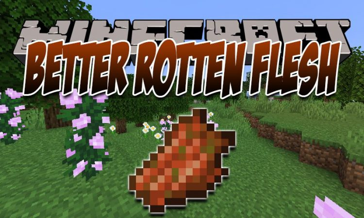 Rotten Flesh To Food mod for Minecraft logo