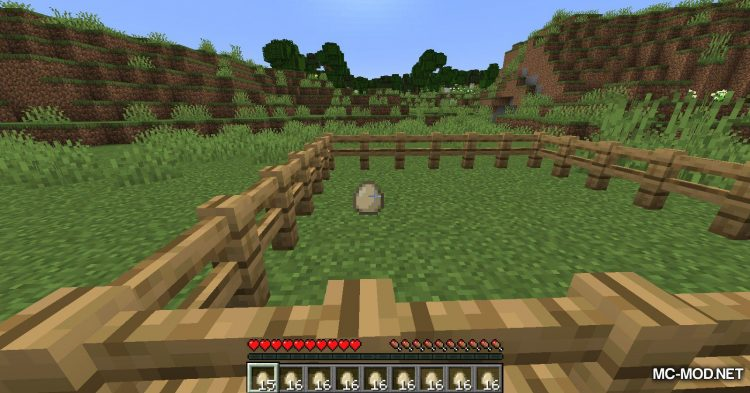 The Egg Came First mod for Minecraft (9)