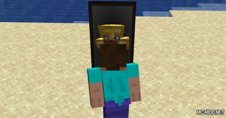 The Magic Mirror mod for Minecraft (7)
