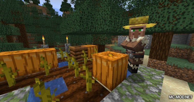 TinyTweaks mod for Minecraft (10)