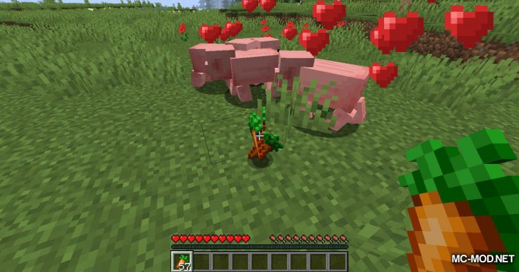 TinyTweaks mod for Minecraft (11)