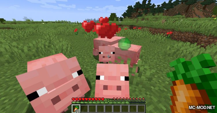 TinyTweaks mod for Minecraft (12)
