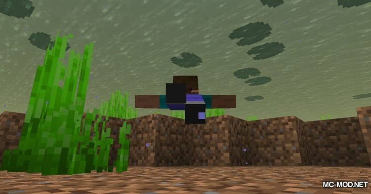 TinyTweaks mod for Minecraft (6)