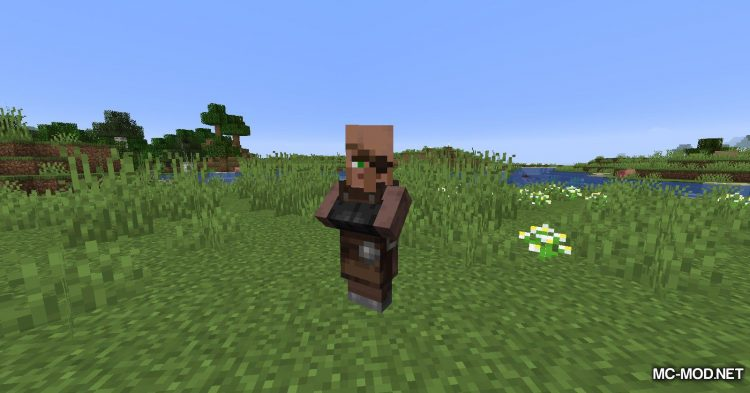 Cubic Villager mod for Minecraft (8)