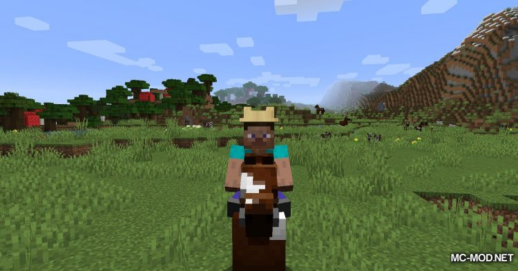 Give Me Hats mod for Minecraft (10)