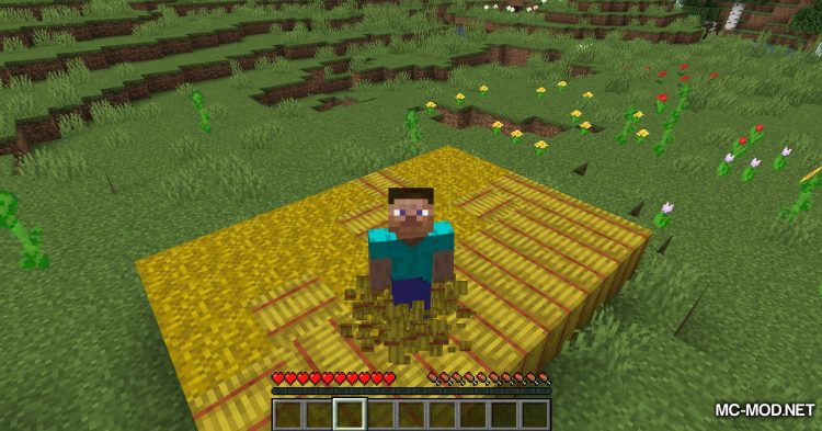 Softer Hay Bales mod for Minecraft (6)