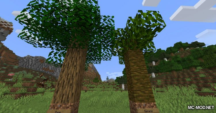 TreeZ mod for Minecraft (5)