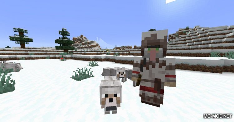 Wandering Trapper mod for Minecraft (13)