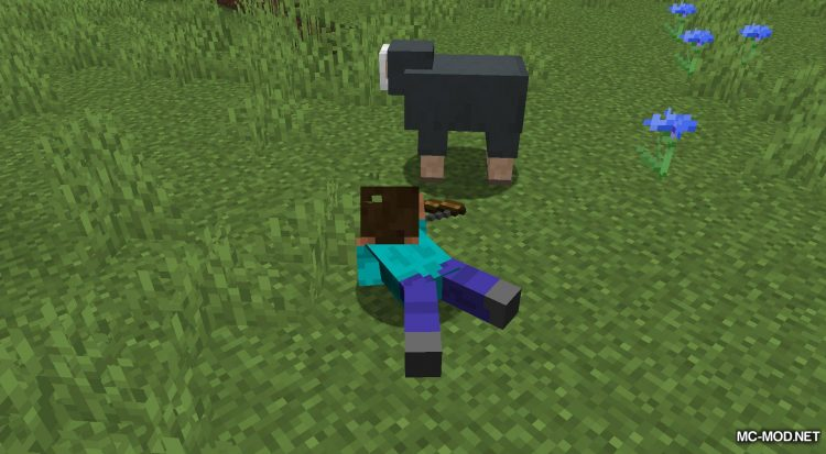 Crawl mod for Minecraft (6)