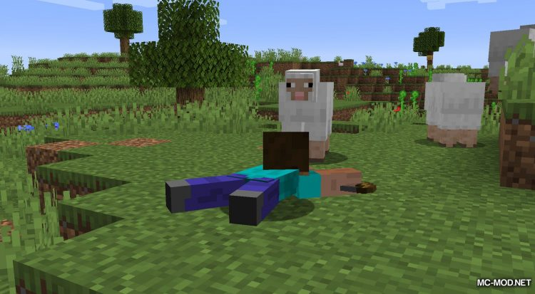 Crawl mod for Minecraft (7)