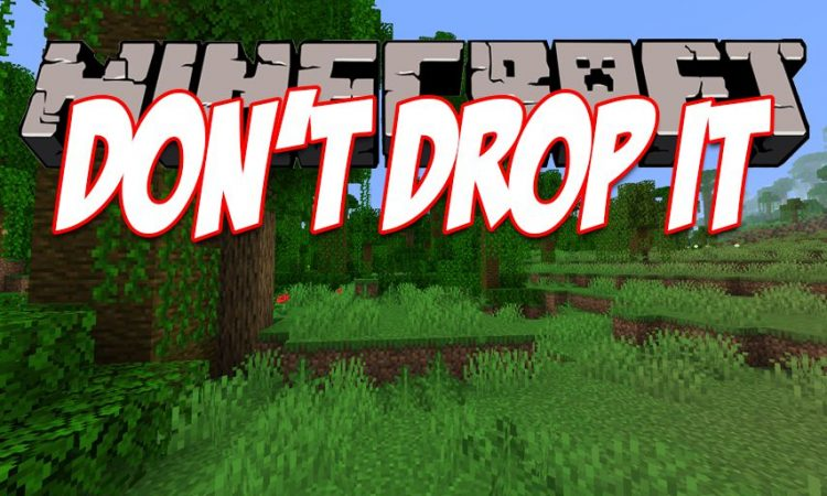 Don_t Drop It mod for Minecraft logo