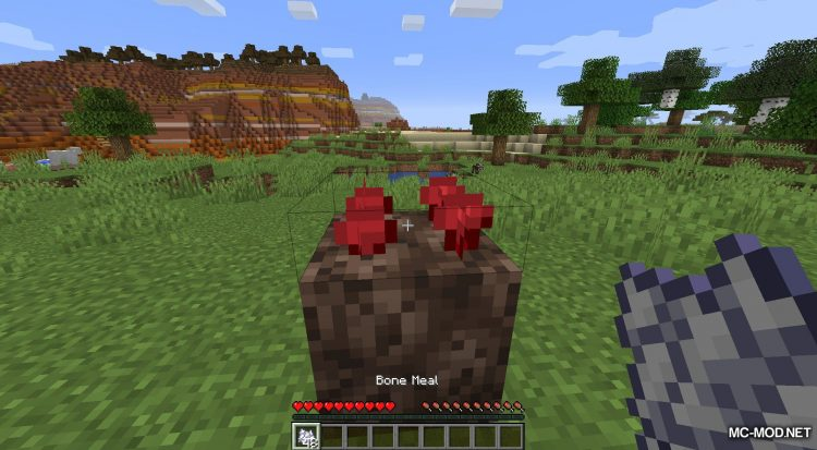 Extended Bone Meal mod for Minecraft (10)